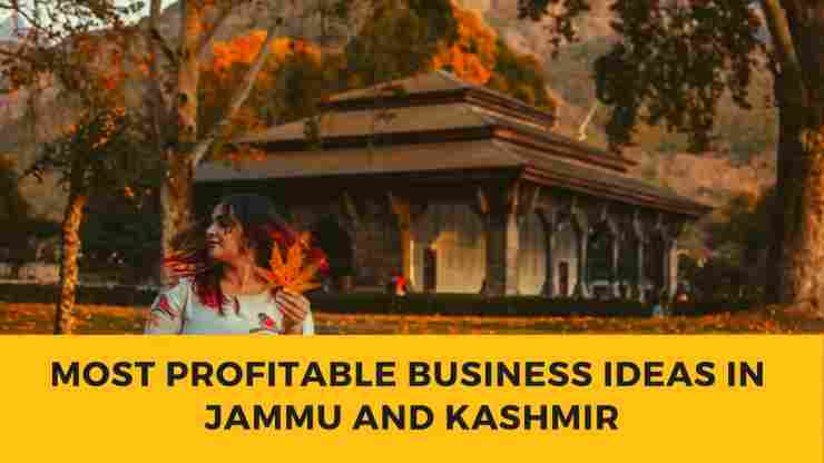 24 Most Profitable Business Ideas in Jammu and Kashmir