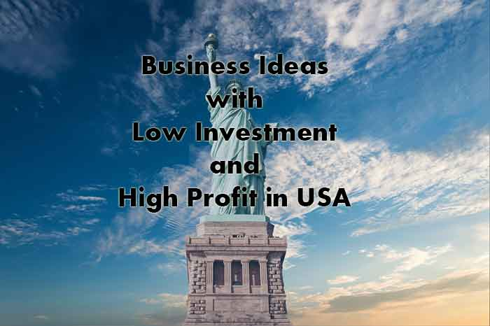 Business Ideas with Low Investment and High Profit in USA