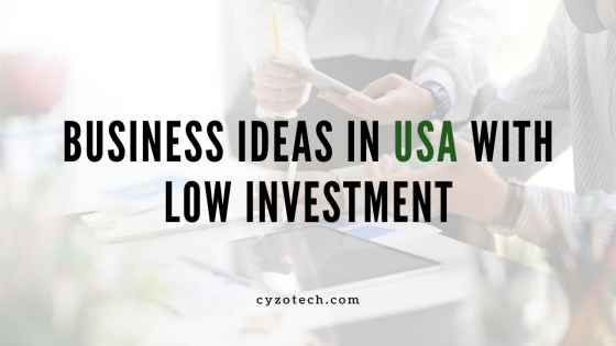 50 Business Ideas in the USA With Low Investment