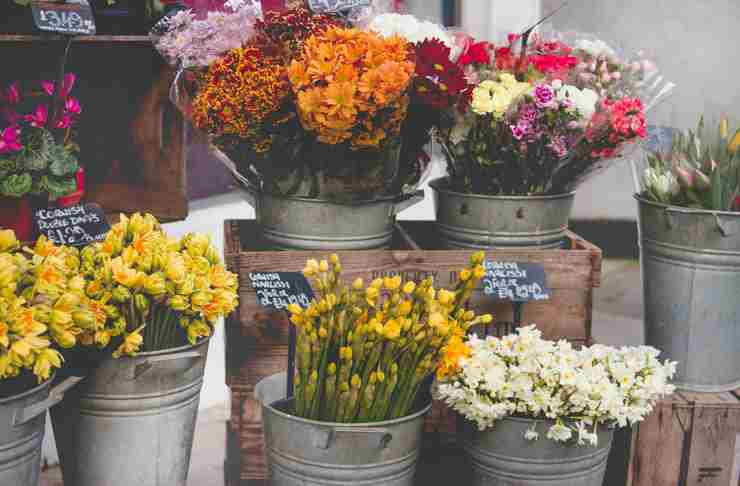 How to Start a Florist Business in South Africa [Complete Guide]