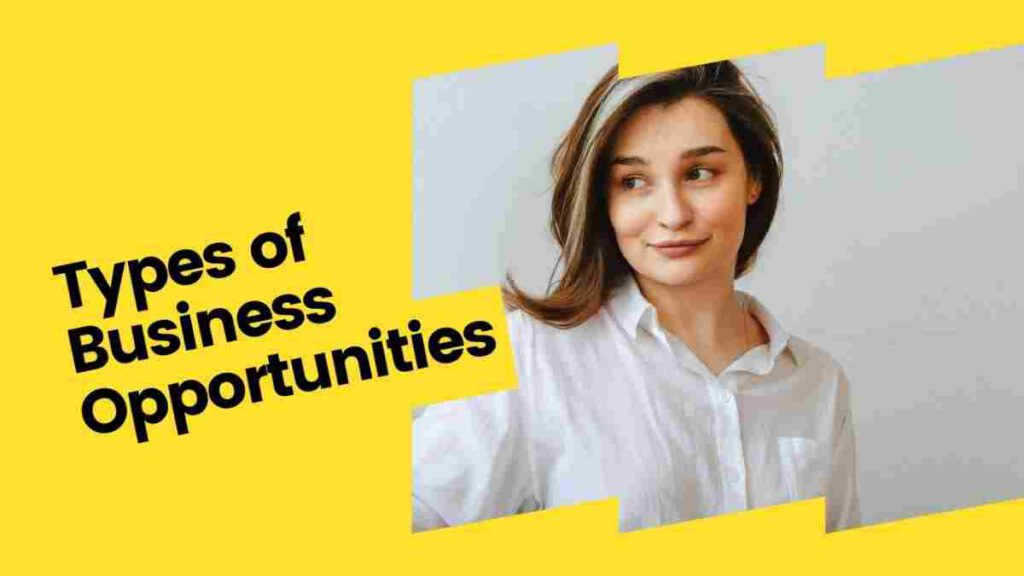 Types of Business Opportunities