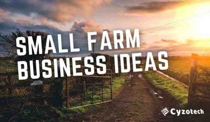 Top 12 Most Brilliant Small Farm Business Ideas for Greater Income